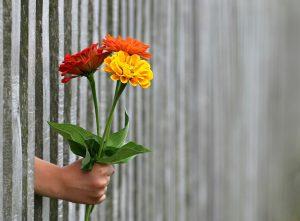 עלינו להתנהג כפי שנראה לנו שהאני האידיאלי שלנו היה מתנהג - מתוך נקודת מוצא של אהבה.