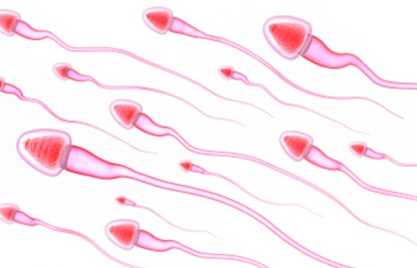 הטיפול בבעיית זרע אצל הגבר – בעיות פוריות אצל גברים