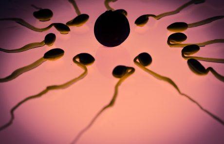 הכול על שיטת המודעות לפוריות Fertility Awareness Method.